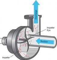 Centrifugal Pump Cutaway